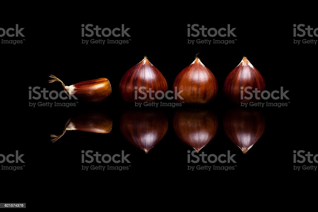 Four brown chestnuts isolated on black reflective background photo libre de droits