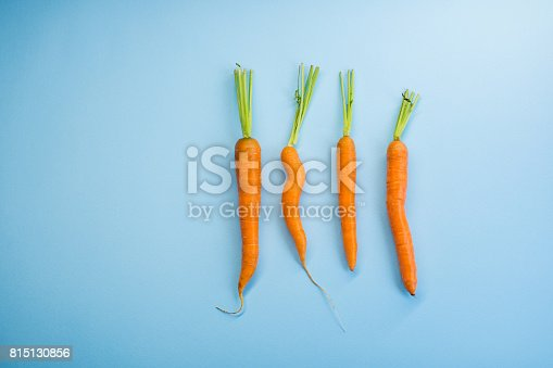Four carrots on the blue background
