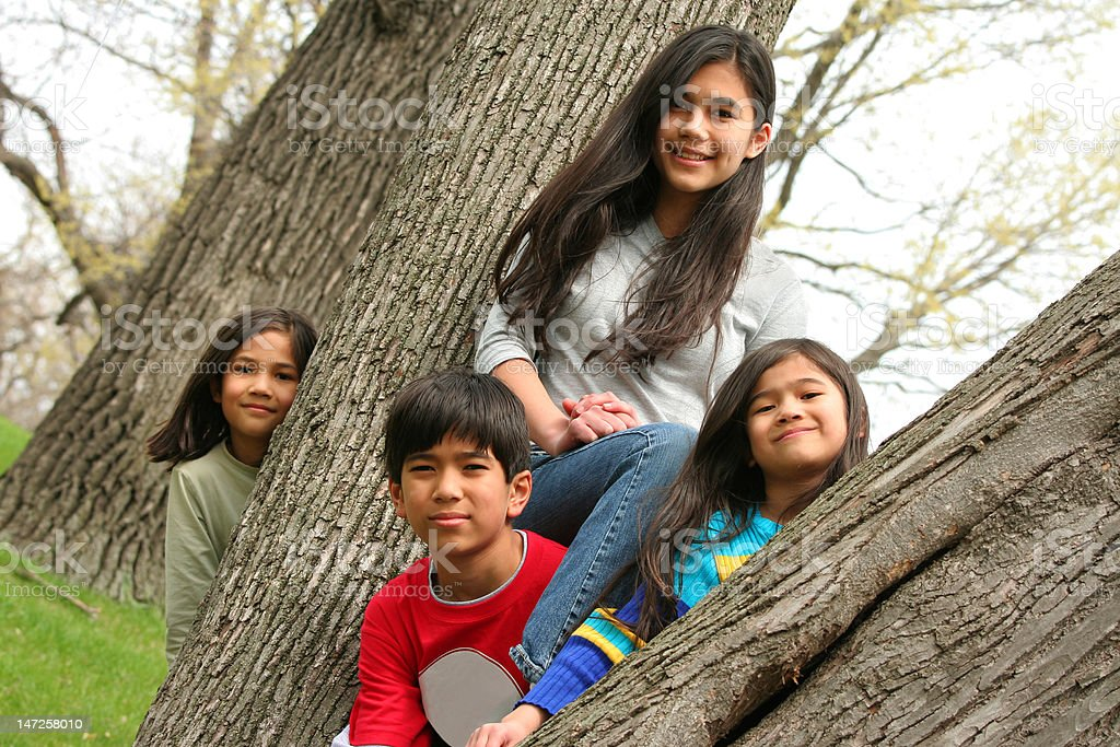 Four children in a tree royalty-free stock photo