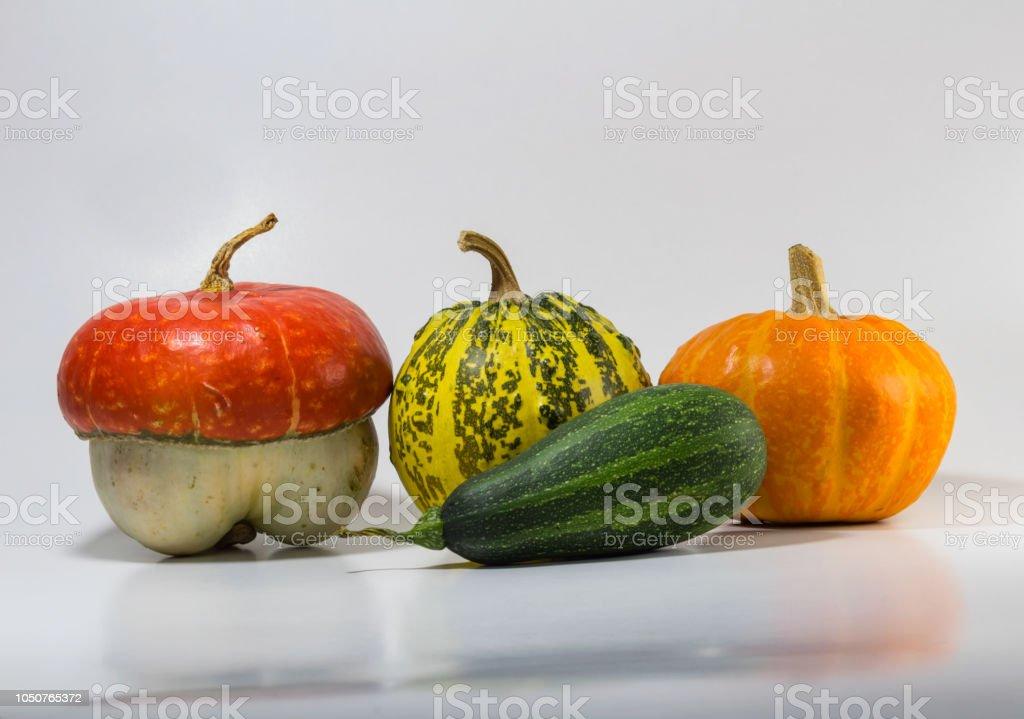 Four decorative pumpkin isolated on white background stock photo