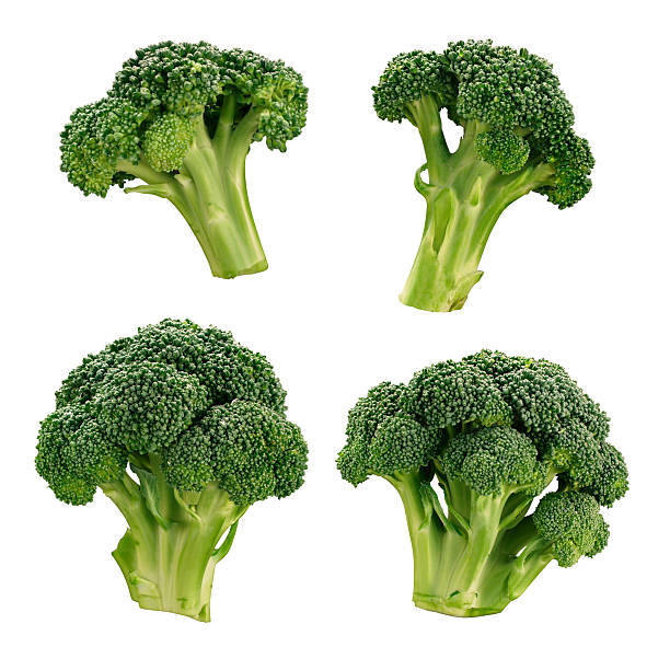 Four different broccoli florets stock photo