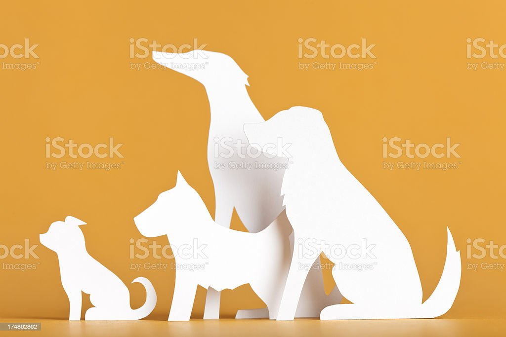 Four dogs attentively waiting - paper concept royalty-free stock photo