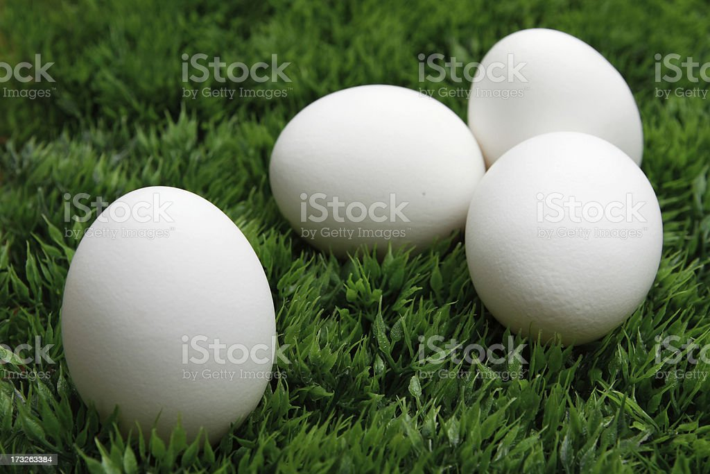 Four eggs on grass royalty-free stock photo