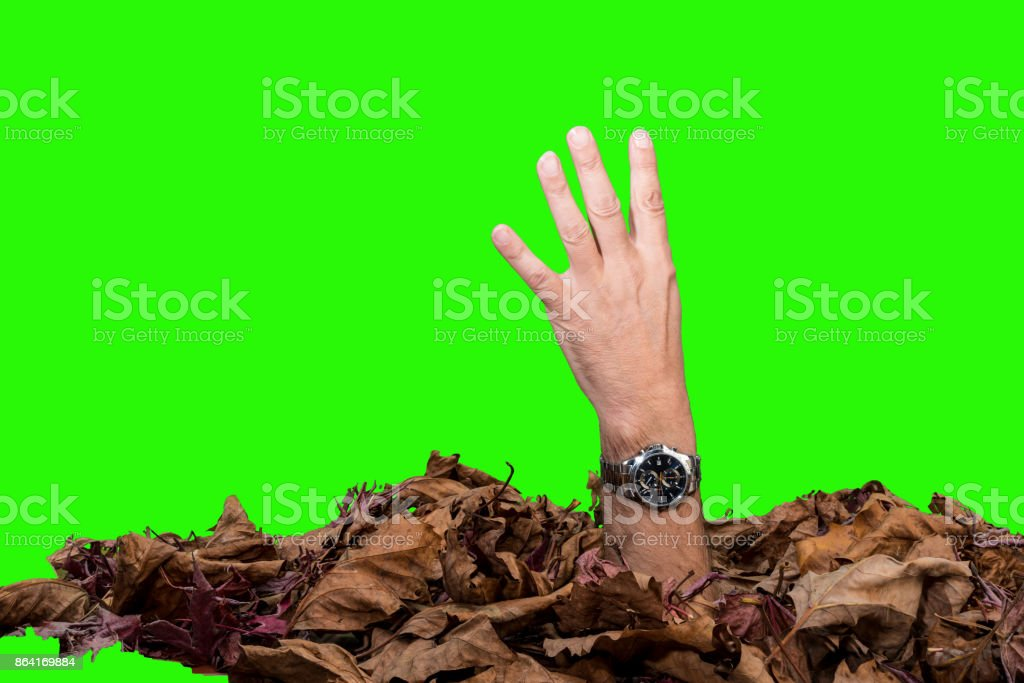 four fingers, against a green screen. royalty-free stock photo