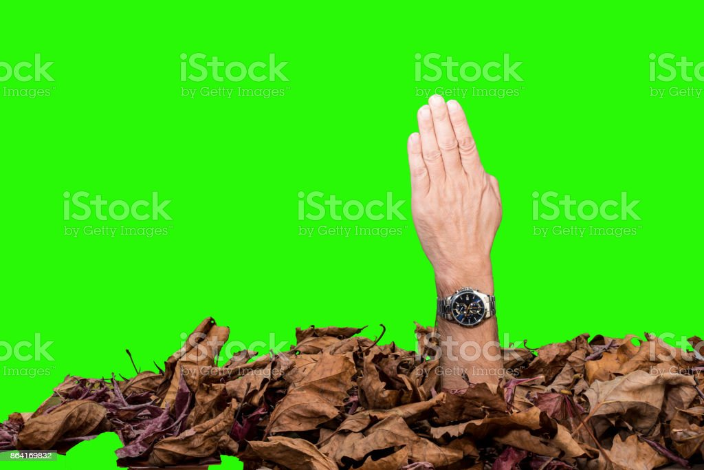 four fingers pressed together royalty-free stock photo