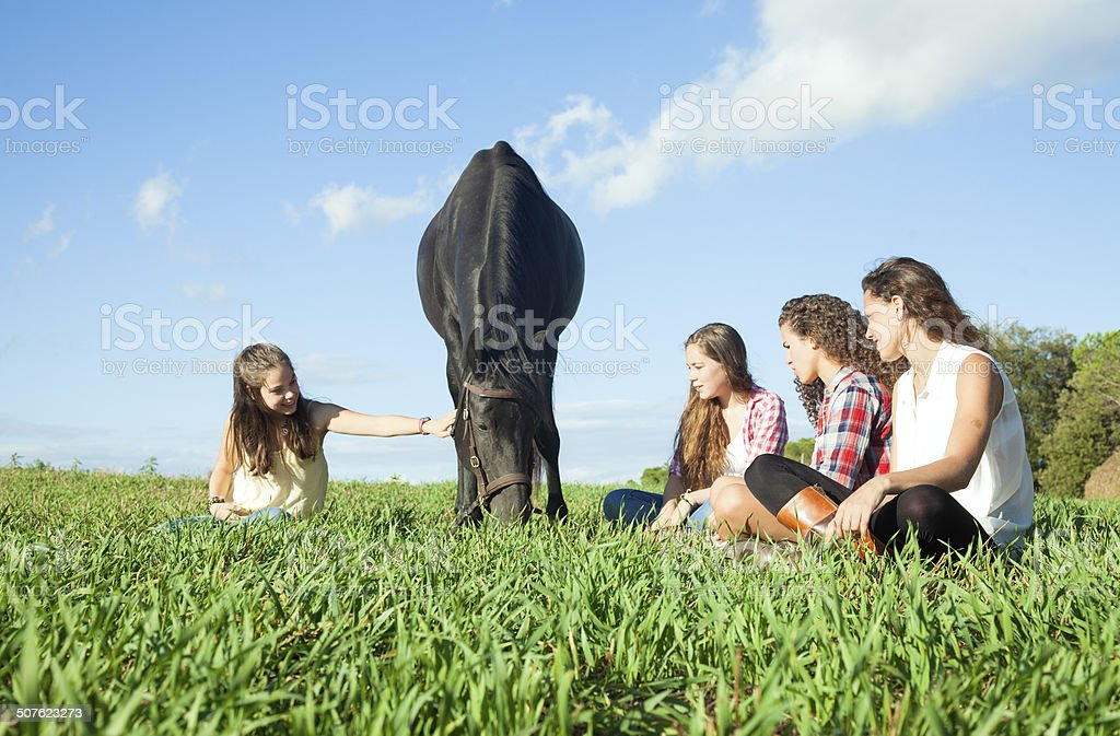 Four friends and a horse grazing stock photo