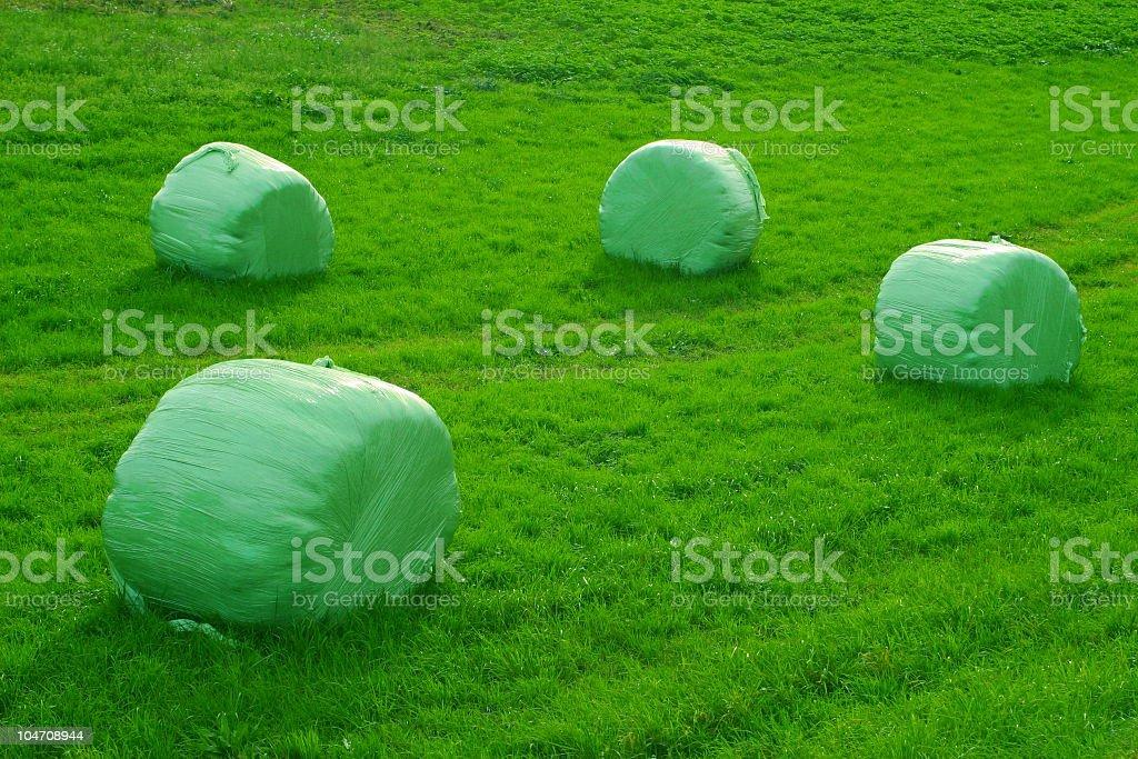 Four Grass Bales royalty-free stock photo