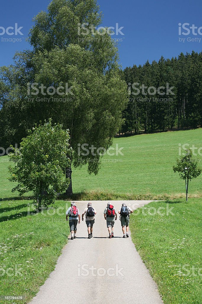 Four hikers in action royalty-free stock photo