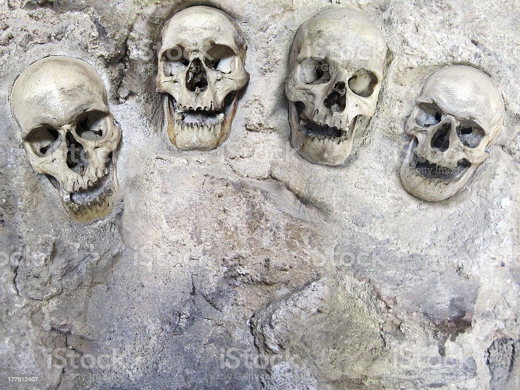 Four human skulls stock photo