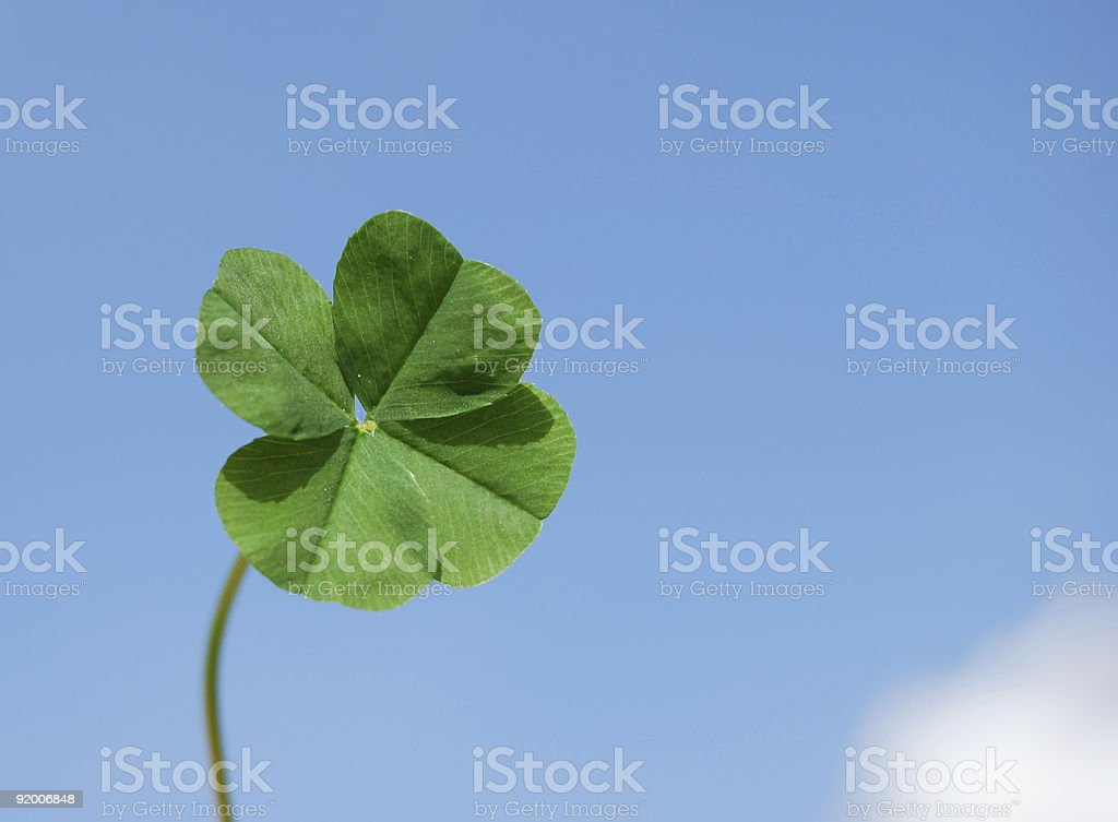 Four leaf clover and sky royalty-free stock photo