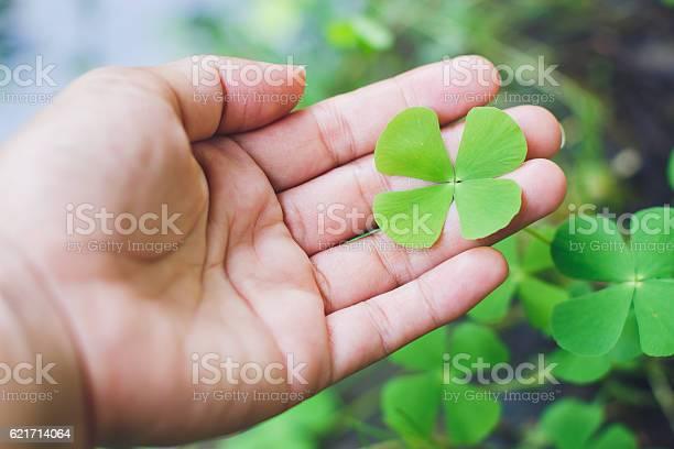 Four leaf clover in handgood luck leaf picture id621714064?b=1&k=6&m=621714064&s=612x612&h=crb2tb1bd7todbowdsbrsa9xoib8mtr5awycc52evf4=