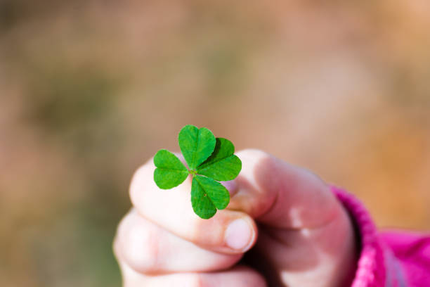 Four leaf clover in small hand of young girl picture id868087112?b=1&k=6&m=868087112&s=612x612&w=0&h=znyyqa3pbqmpek0imh1h2civ5qqkw0pawinpsmztiny=