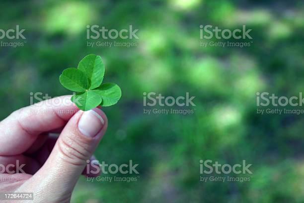 Four leaf clover picture id172644724?b=1&k=6&m=172644724&s=612x612&h=xa4zs8zvtcrxehqkvnbuxz bemjw69khnbs8vz8mon0=