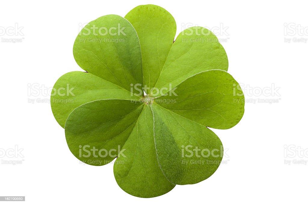 Símbolo do Trevo de Quatro Folhas - foto de acervo