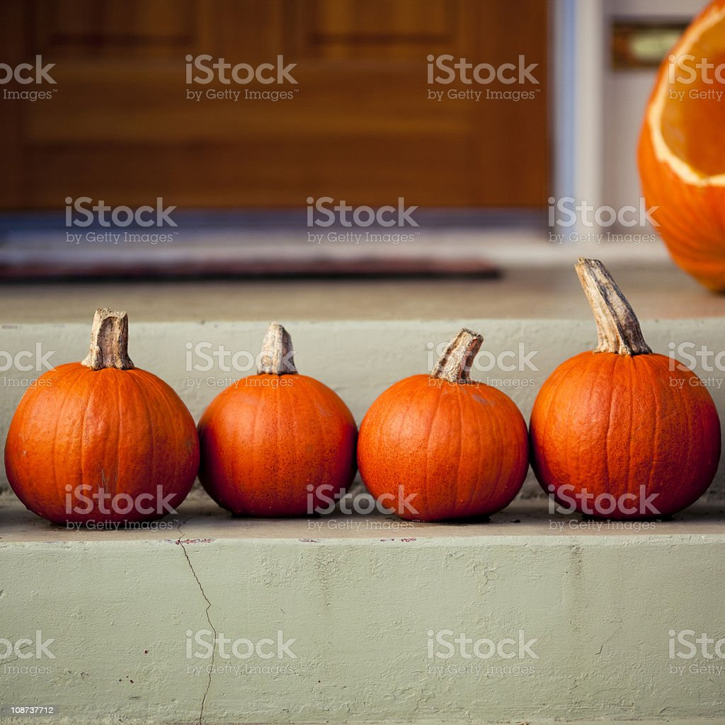 Four little pumpkins royalty-free stock photo