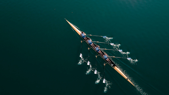 Four male rowers sculling on lake in sunshine.