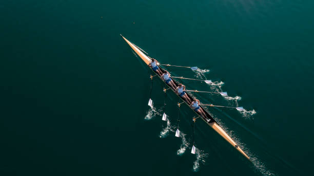 Four male athletes sculling on lake in sunshine stock photo