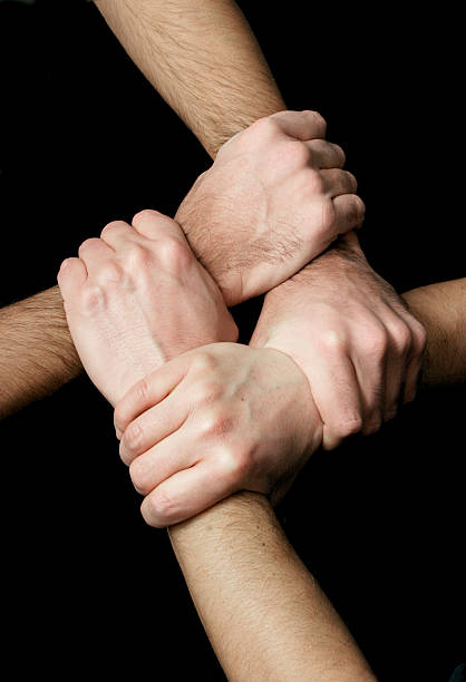 Four male hands holding pulses symbolizing union stock photo