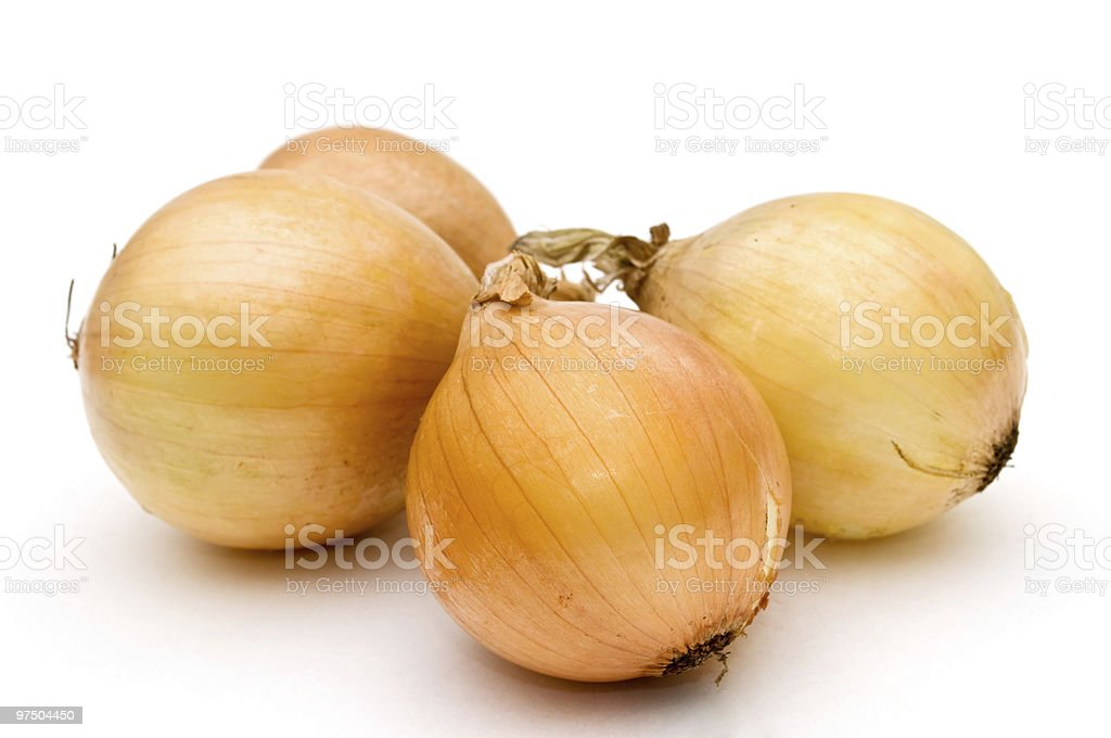 Four onion. royalty-free stock photo