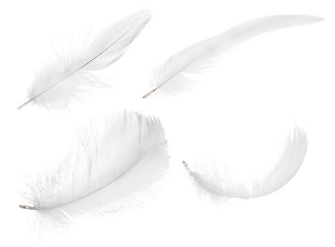 Adlerfeder mit Pferdehaar  als Indianischer Haarschmuck freigestellt auf weiß