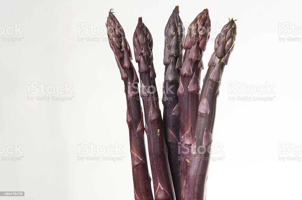 Four Purple Asparagus stock photo