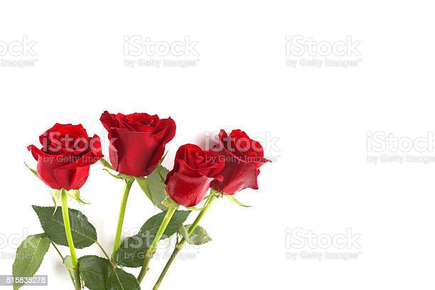 Four red roses isolated on white background picture id515835278?b=1&k=6&m=515835278&s=612x612&h=cu1fj5hljs4wu7c4jroitf l 8wsbes fo7tykifkds=
