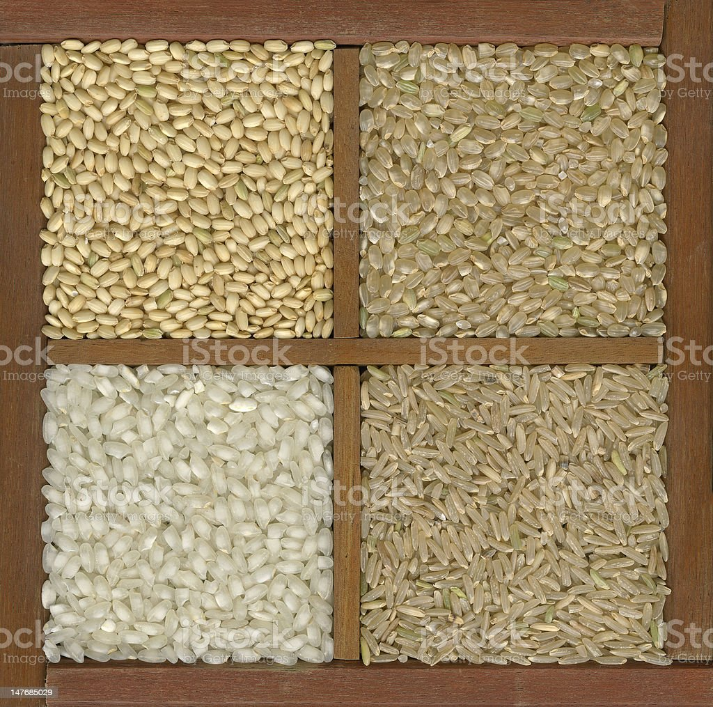 four rice grains in a box with dividers royalty-free stock photo
