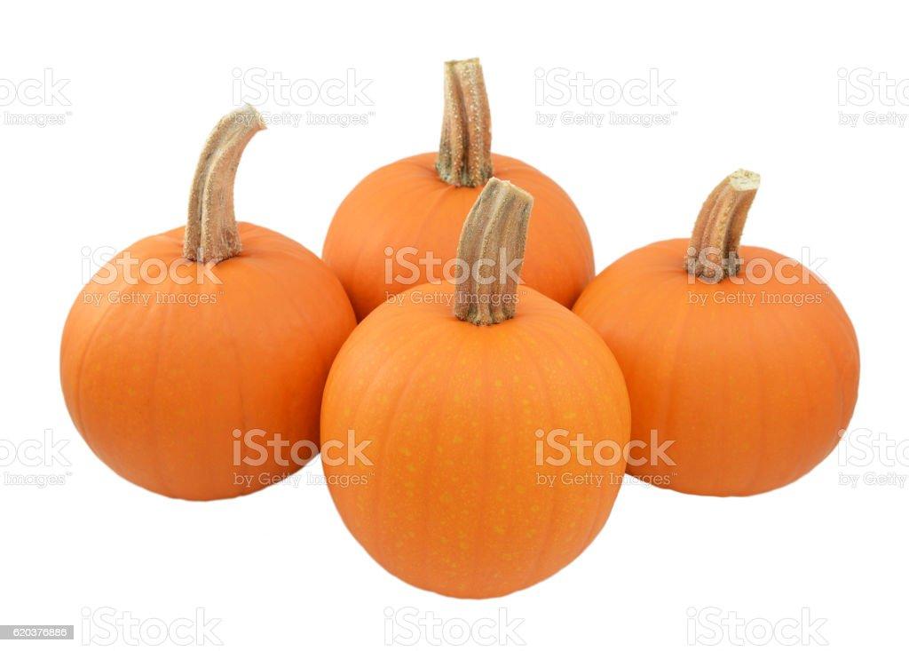 Four ripe orange pumpkins foto de stock royalty-free