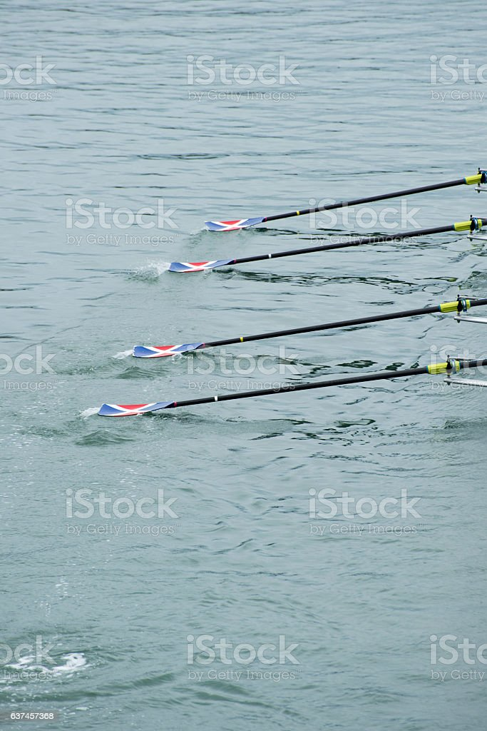 Four Rowing Ores in the Water stock photo