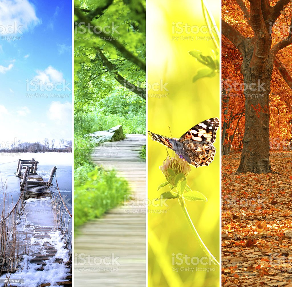 four seasons collage, several images of beautiful natural landscapes...