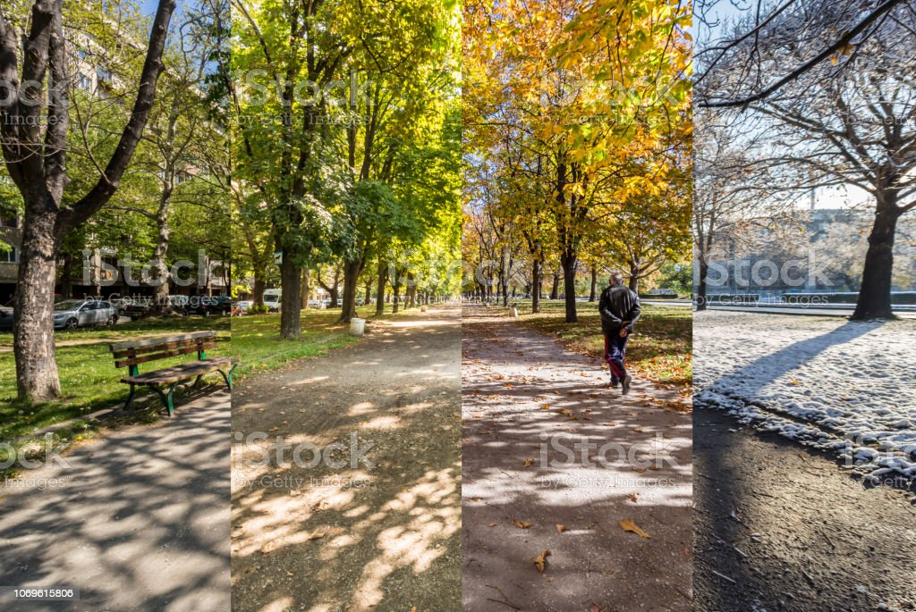 Four seasons concept. The effect of the 4 seasons on the urban environment. Four pictures of one place captured during one year and seamlessly blended in one photography composite. stock photo
