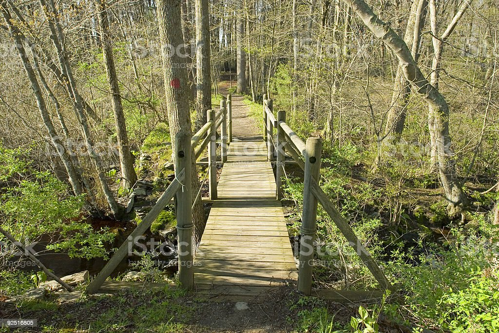 Four Seasons - Footbridge in Spring royalty-free stock photo