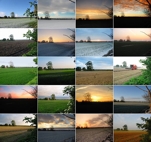 four seasons - twenty photos - four seasons stock photos and pictures