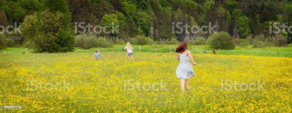 Four siblings walking in a yellow wild flower field stock photo