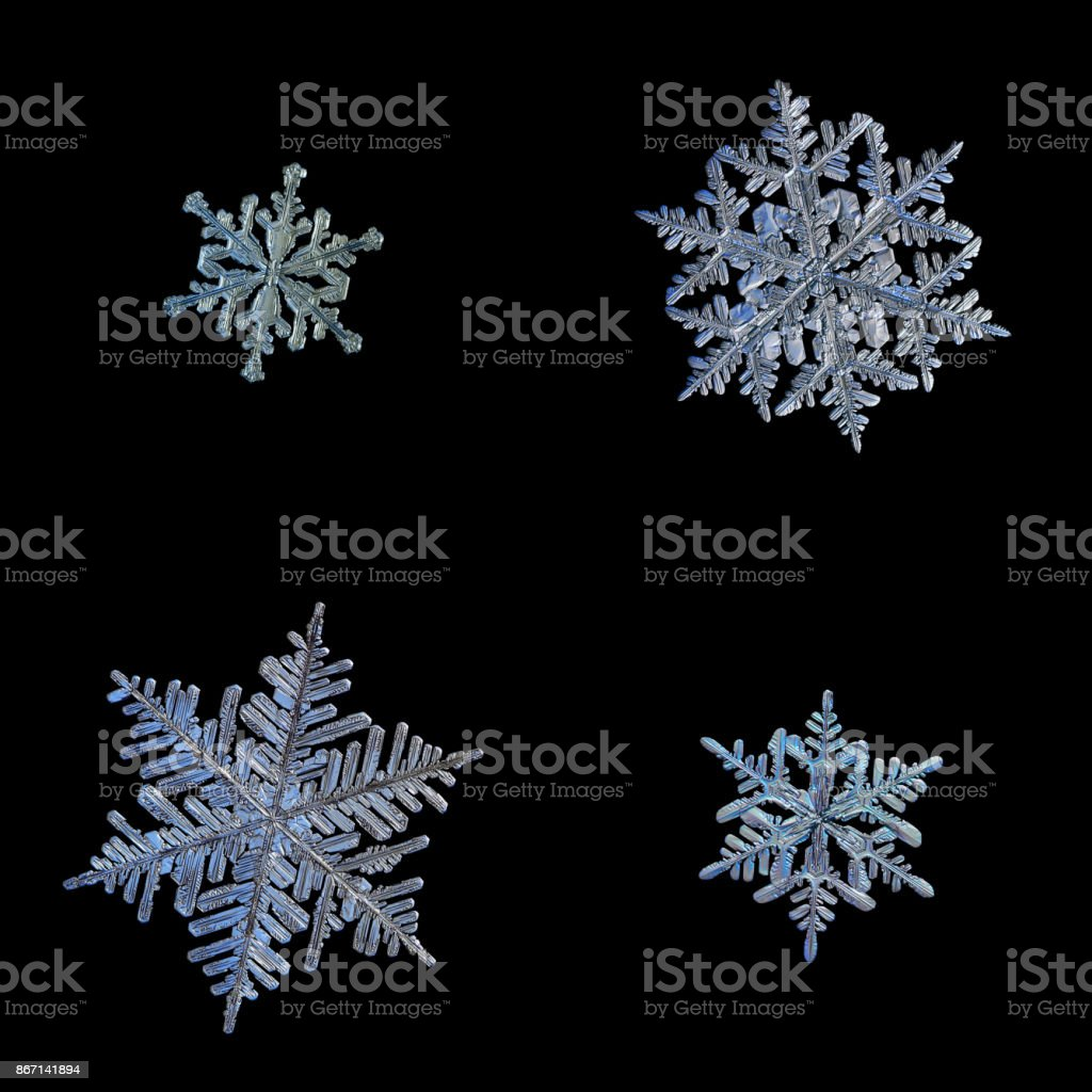 Four snowflakes isolated on black background stock photo