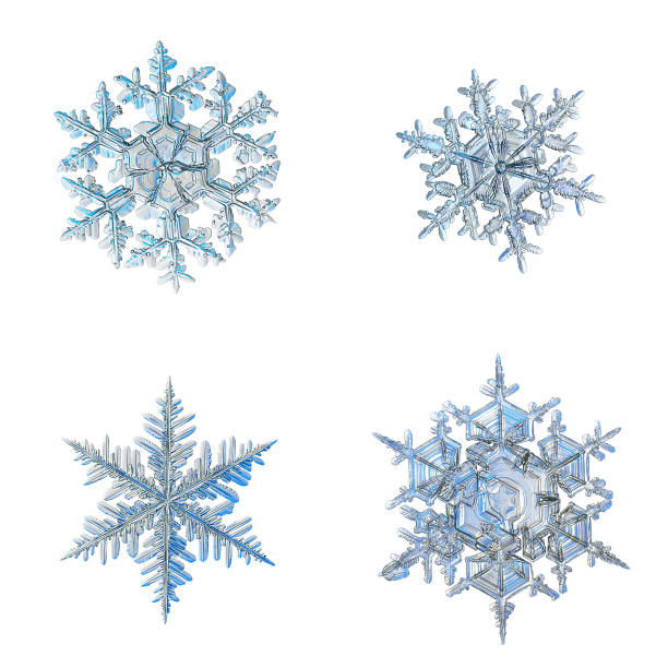 Four snowflakes isolated on white background picture id1150079953?b=1&k=6&m=1150079953&s=612x612&w=0&h=kmzlf4pczw bp82nbnfkpeys9opggrmsuvxi9goyyqo=