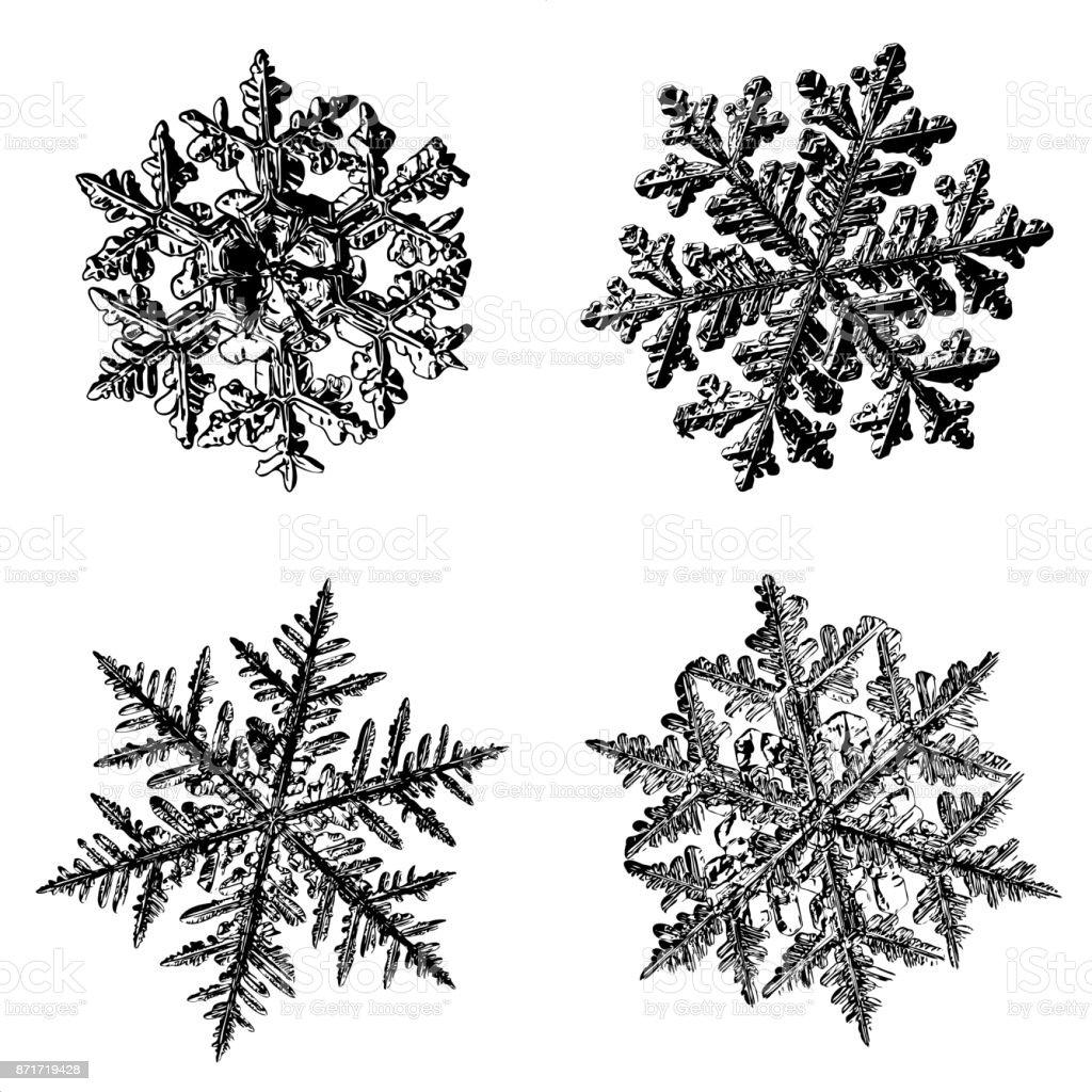 Four snowflakes on white background stock photo