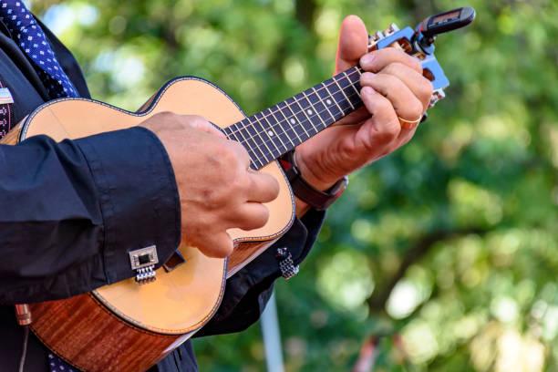 four strings acoustic guitar - samba imagens e fotografias de stock