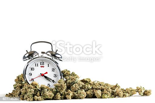 Alarm clock with the time 4:20 in a pile of marijuana on a white background.