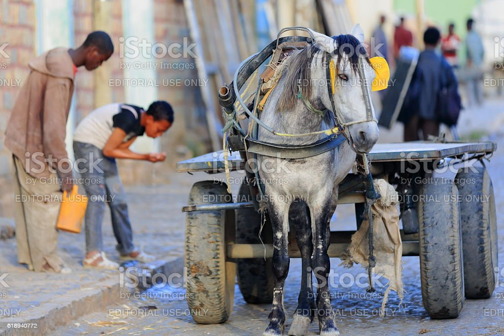 Four wheeled cart with horse. Mekelle-Ethiopia. 0486 stock photo