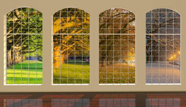 Four windows overlooking the park at different times of the year: spring, summer, autumn and winter Four windows overlooking the park at different times of the year: spring, summer, autumn and winter four seasons stock pictures, royalty-free photos & images