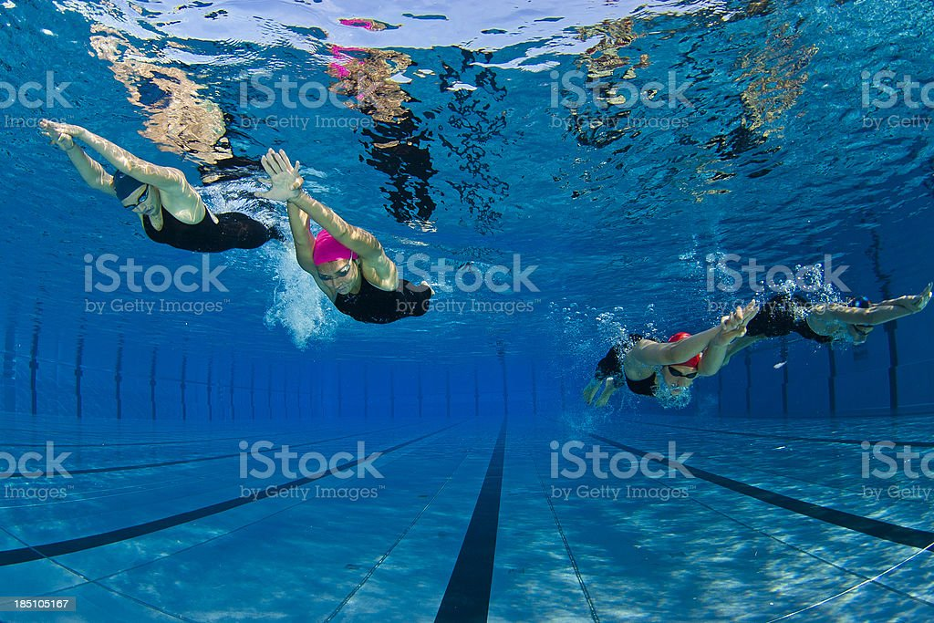 Four young woman swimming underwater royalty-free stock photo