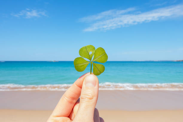 four-leaf clover against blue lagoon - luck of the irish stock photos and pictures