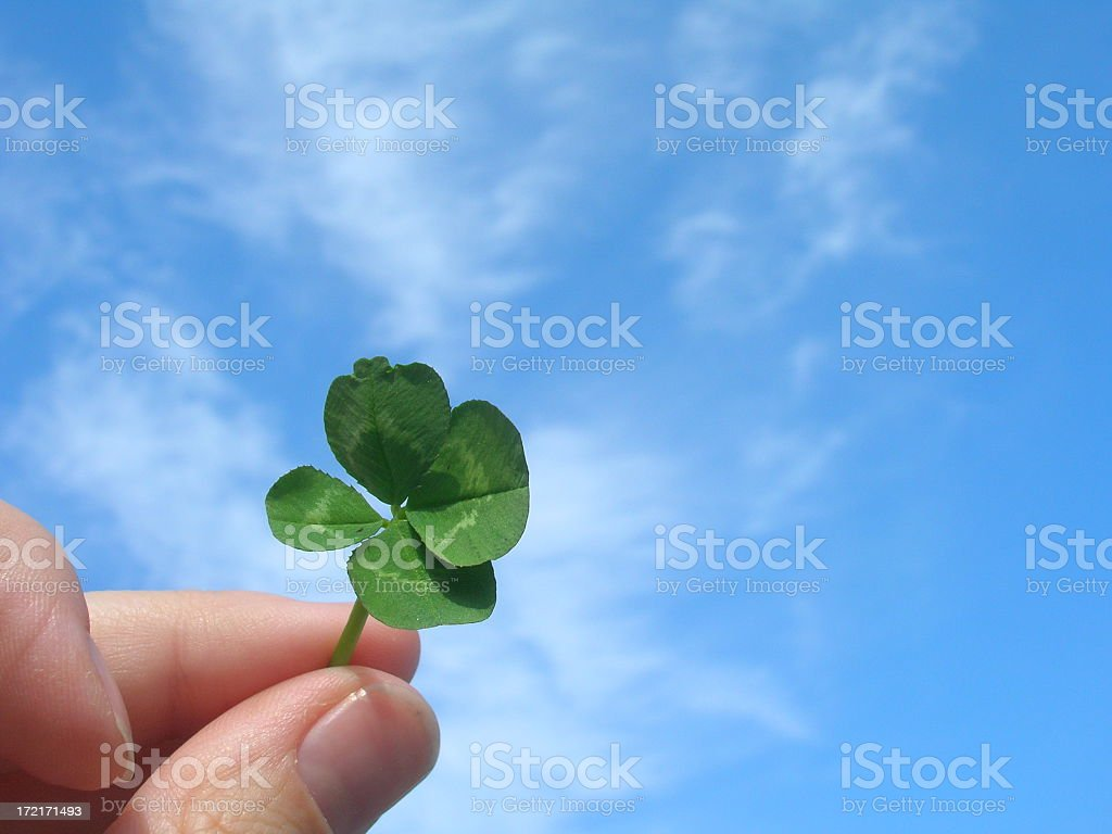 Four-leaf clover held against a sky background royalty-free stock photo
