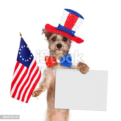 489224301 istock photo Fourth of July Dog With Sign 464618142