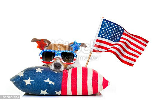 istock fourth of july independence day dog 537321454
