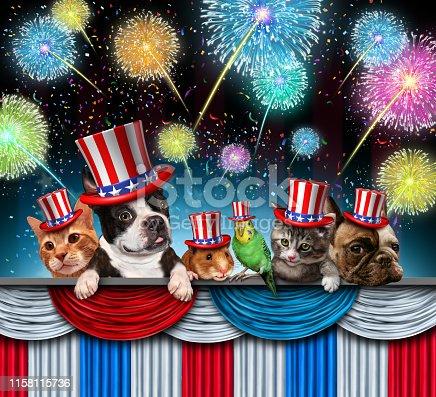 489224301 istock photo Fourth Of July Pet Celebration 1158115736