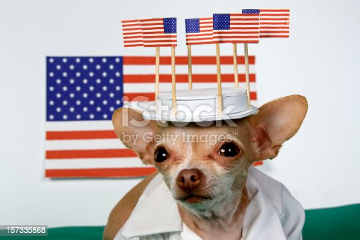 istock fourth of july 157335868