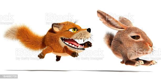 Fox and rabbit picture id164660705?b=1&k=6&m=164660705&s=612x612&h=kti7dwyftv vfy5y7f1chu9jzwtvg5lint0or66 awy=