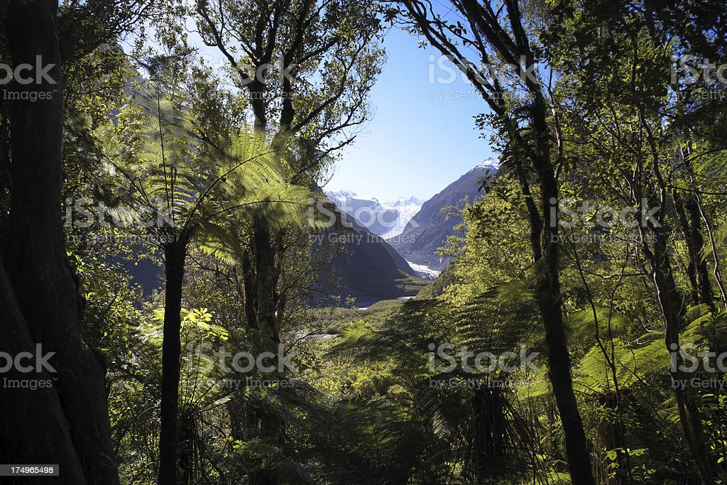 Fox Glacier And Rainforest royalty-free stock photo